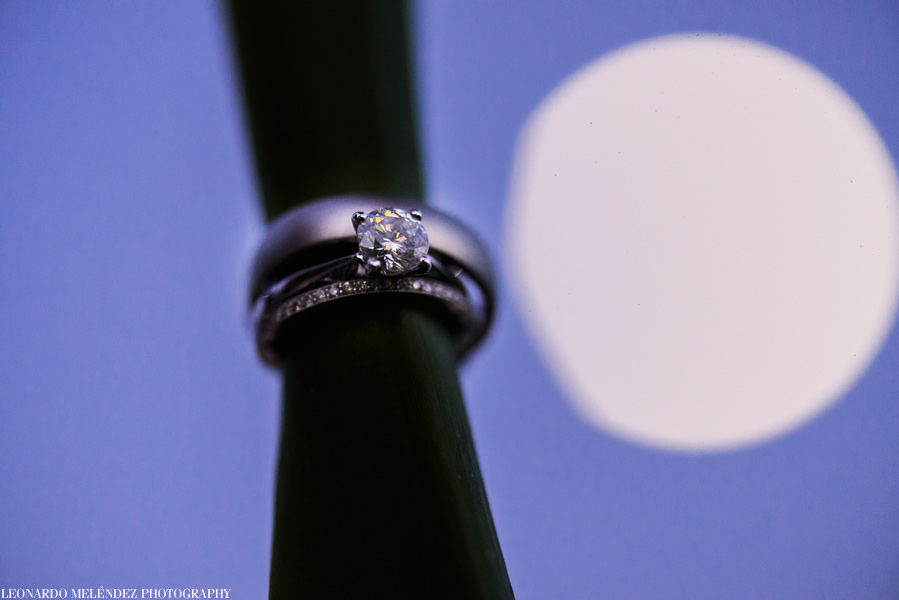 Wedding Rings.  Belize wedding photography.